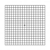 אמסלר-גריד (Amsler grid)