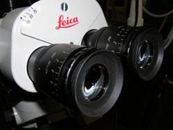 העיניות של מיקרוסקופ לניתוחי עיניים - ניתוחי גלאוקומה וקטרקט